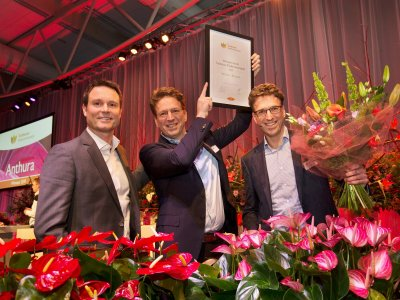 Anthura genomineerd voor International Grower Of The Year